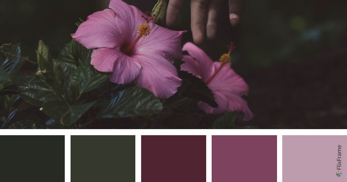 Color Inspiration, Botanic Hues