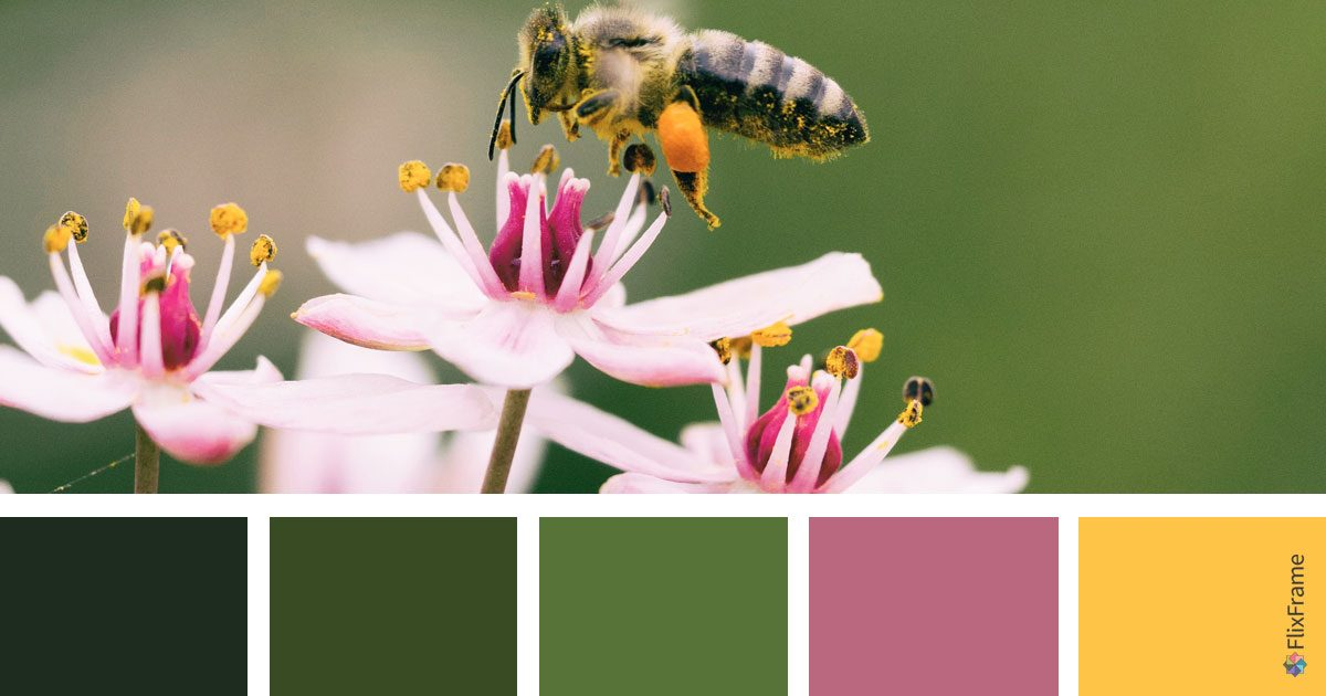 Color Inspiration, Summer Hues